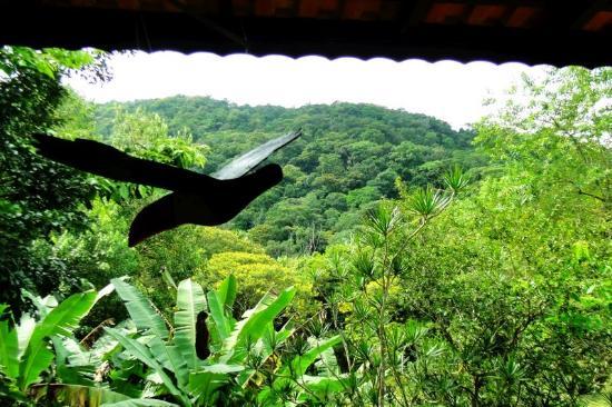 Hostel Natureza & Arte