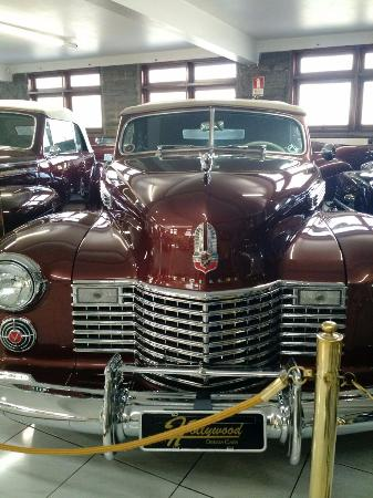 hollywood dream cars picture of museu do automovel hollywood rh tripadvisor ie