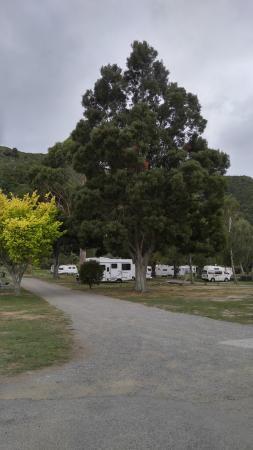 Waikawa Foto