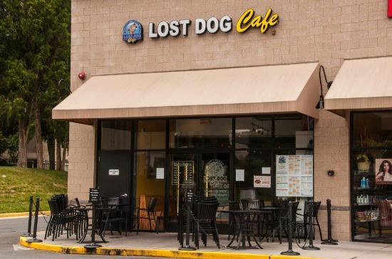 Lost Dog Cafe Mclean