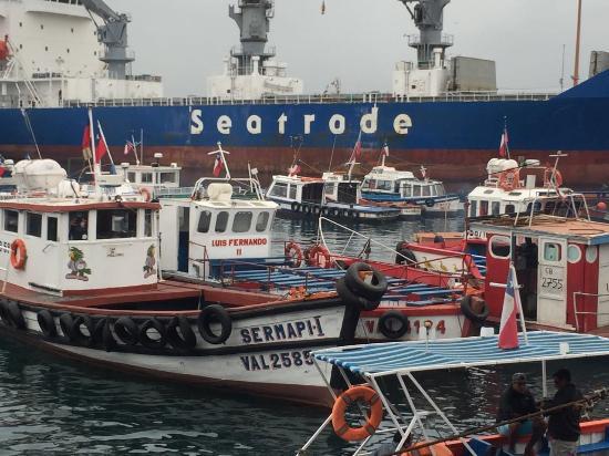 Valparaiso Puerto Magia
