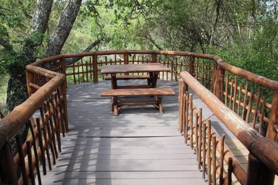 Bonamanzi Game Reserve: photo3.jpg