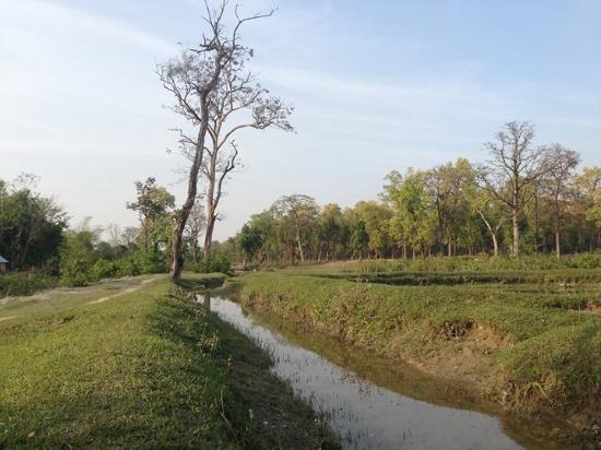 Nature Safari Resort & Lodge: Afternoon walk in the village