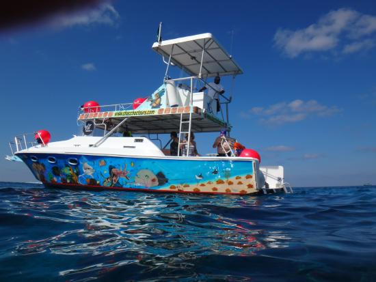Cozumel Best Tours