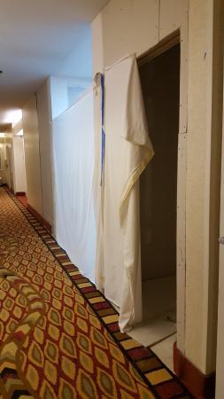 Lewisville Comfort Suites Vista Ridge Mall Picture