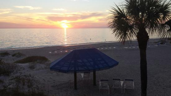 Gulf Tides of Longboat Key: Our bit of heaven
