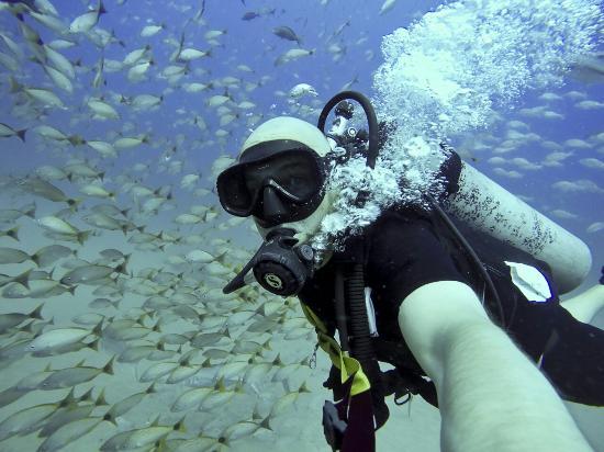 Drake Bay, Kostaryka: G0054005_PER_large.jpg