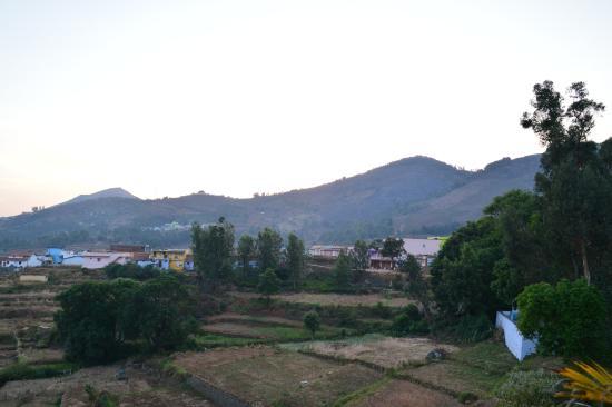 Mount 'n' Mist Image