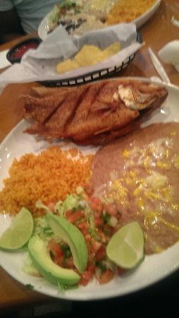 Torero's Mexican Restaurant: IMAG5322_large.jpg