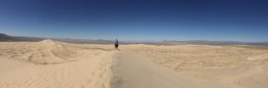 Essex, CA: Kelso Dunes ridge walk.