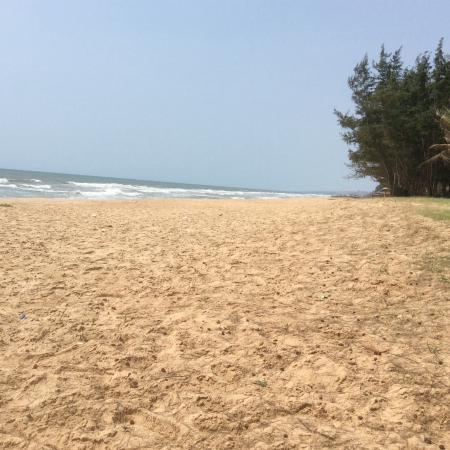 Sandhills Beach Resort & Spa-billede