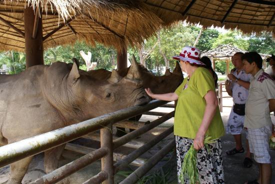 Все свои... - Picture of Khao Kheow Open Zoo, Si Racha - TripAdvisor