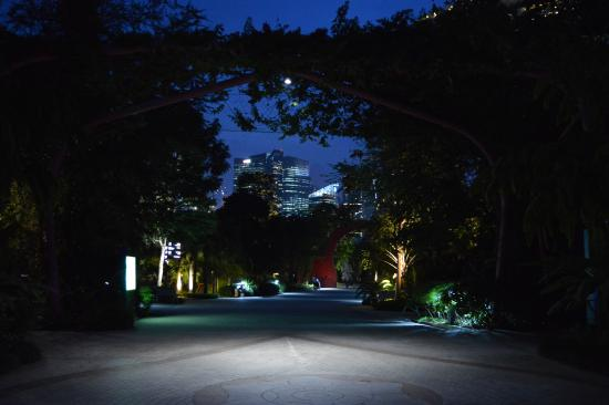 Gardens By The Bay: Inside Chinese Garden