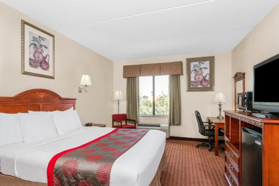 Ramada Panama City: 1 King Bed  Room