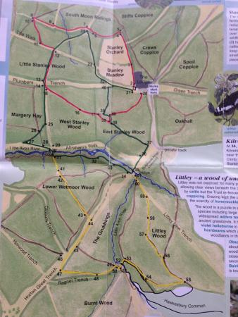 Hawkesbury Upton, UK: Map of Lower Woods Nature Reserve