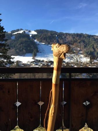Chalet Skade - HOFNAR: Say hello to Pierre
