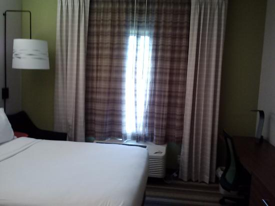 Holiday Inn Express Hotel & Suites Lexington- Downtown / University : window with a/c unit below
