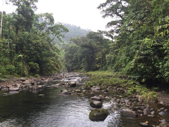 Braulio Carrillo National Park, Costa Rica: Canopy adventure, great fun, great guides!