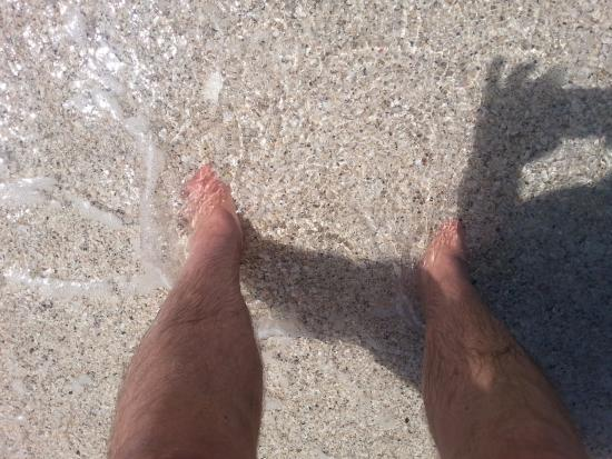 great place to sink your feet in the sand picture of nokomis beach rh tripadvisor com