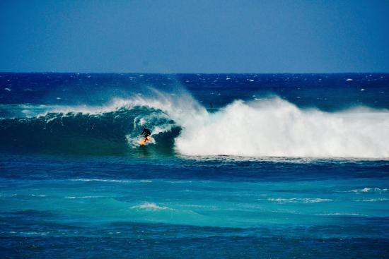 Turtle Bay Resort North S Surfing Sunset Beach 6 Miles Away