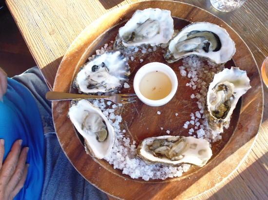 Long Beach, Вашингтон: Oysters
