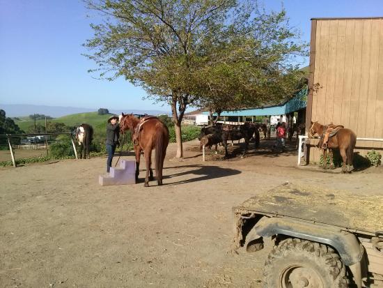 Milpitas, Kaliforniya: Mount up to ride