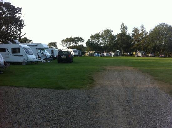 Bay Horse, UK: Top field touring park