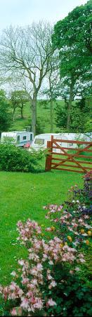 Bay Horse, UK: Seasonal caravan paddock
