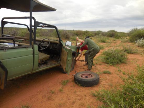 Okambara Elephant Lodge: Plattfuß beim gamedrive