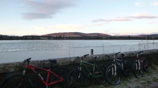Alyth Cycles 사진