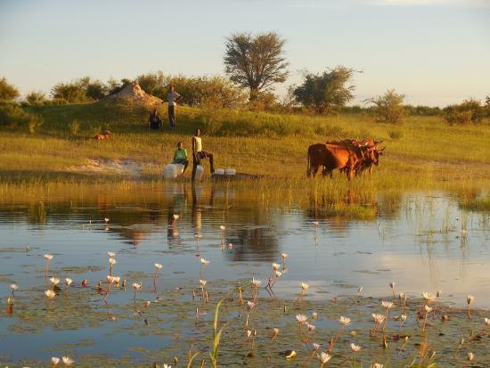 Rundu, Namíbia: Blick vom Boot am abend