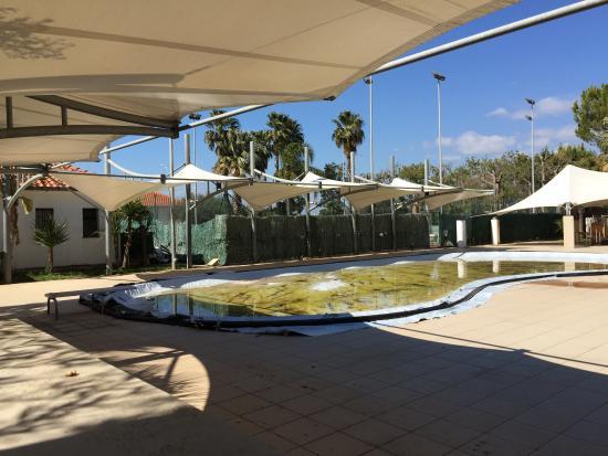 Villa Orchidea : piscina