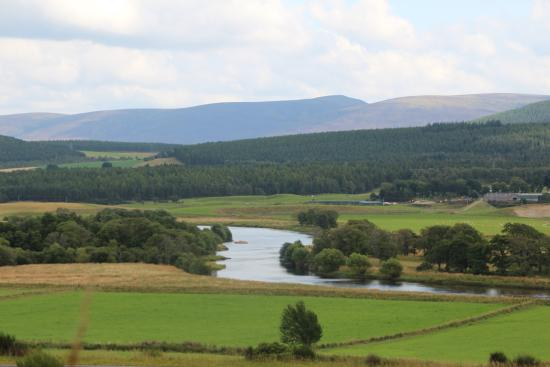 Netherfield Bed and Breakfast: River Spey from Curr Woods