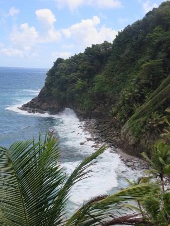 Saint George Parish, Dominica: Aussicht auf die Klippen