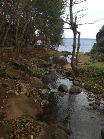 Saint George Parish, Dominica: Flusslauf, der im Meer mündet