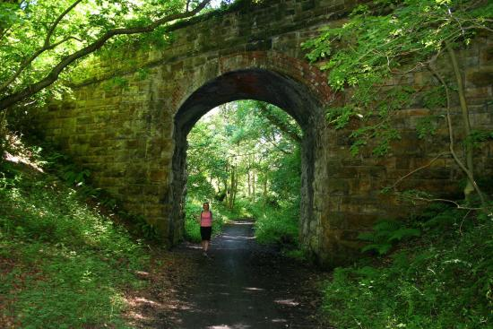 Scarborough to Whitby Rail Trail