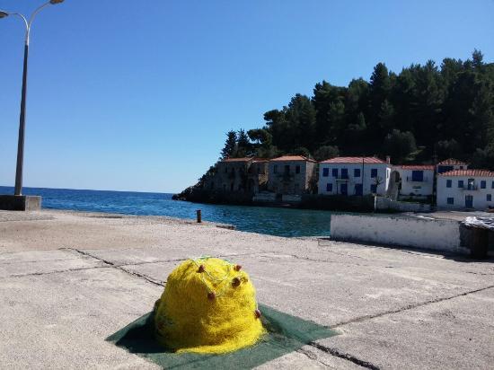 Paraliako Hotel: Kyparissi