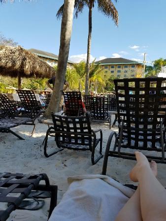 20160322 173738 large jpg picture of loews royal pacific resort rh tripadvisor com