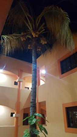 Hotel Plaza by Phocea: Patio