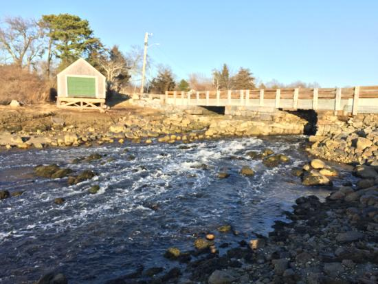 ذا فيلدج إن كيب كود: Mill Pond race