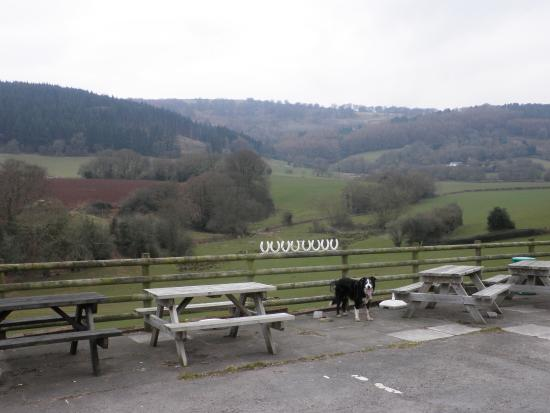 Mamhilad, UK: This is the lovely view from this welcoming dog friendly inn