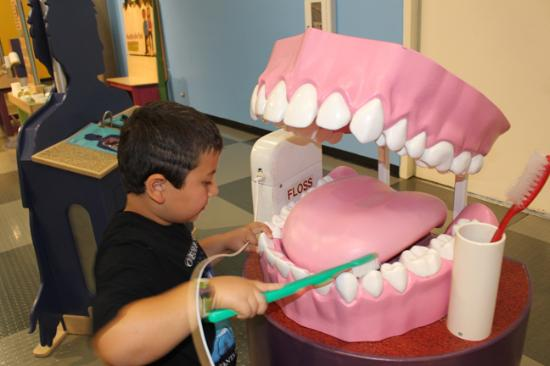 learning the importance of dental hygiene in a fun and interactive rh tripadvisor ca