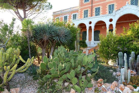 Giardini Botanici Hanbury: Palazzo