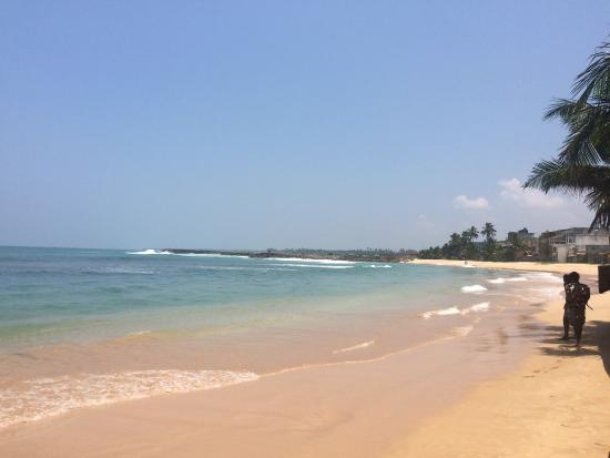 Bentota, Sri Lanka: Thush Tours Sri Lanka - Day Tours