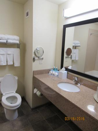 Holiday Inn Express Truth or Consequences: Bathroom