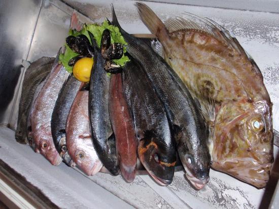 Jadranovo, Hırvatistan: quality fish