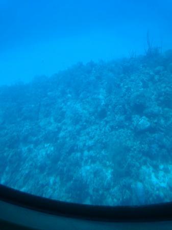 George Town, Grand Cayman: DSC_1145_large.jpg