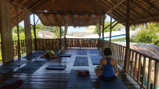 Oasis Yoga: 20160328_083828_large.jpg