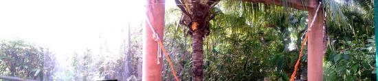 Coco's Cabanas: photo0.jpg