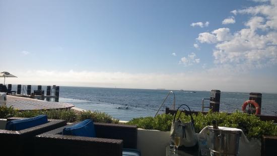 Radisson Blu Hotel Waterfront, Cape Town Picture